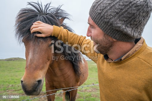 Caucasian male in Iceland petting Icelandic horse in green meadow. Shot in Springtime, overcast sky, man wearing yellow pullover. People travel animal affection concept