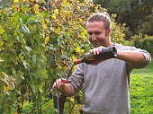 Young man pouring red wine in glass while in vineyard in Autumn