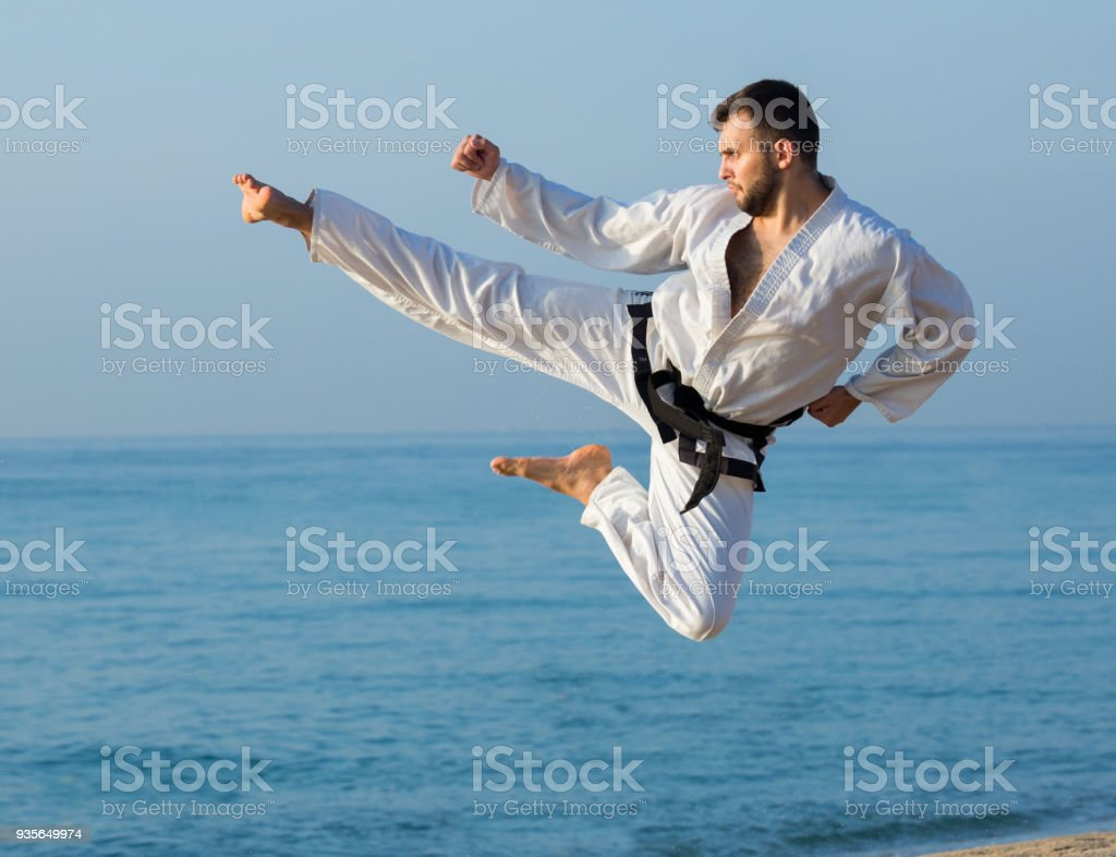 young man practicing karate positions stock photo