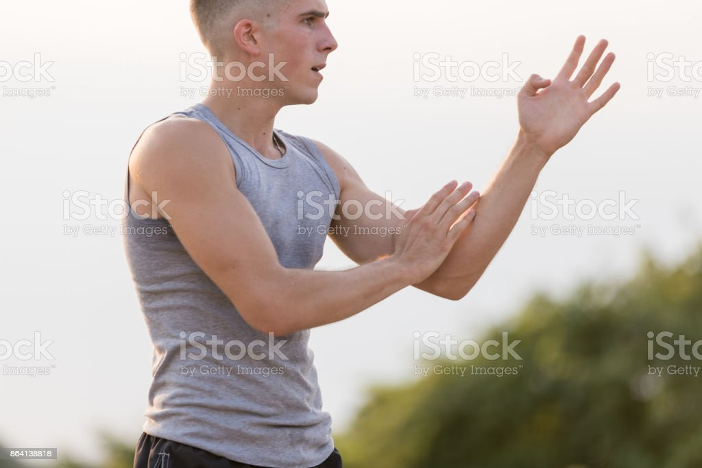 Young man practicing martial art royalty-free stock photo