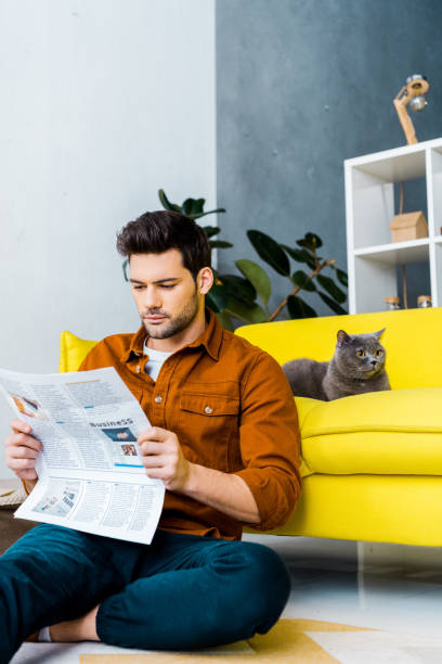Young man reading newspaper and sitting near sofa with cat picture id1094483222?b=1&k=6&m=1094483222&s=612x612&w=0&h=n dx mergx udjbhlelykq8br 2akhfl 1xbstefex8=