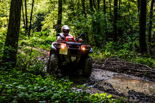 Young man ride a quad motor in the forest in dirt, Serbia quad quadbike stock pictures, royalty-free photos & images