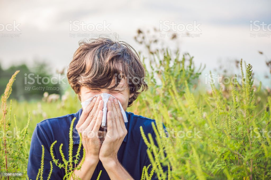 Young man sneezes because of an allergy to ragweed.