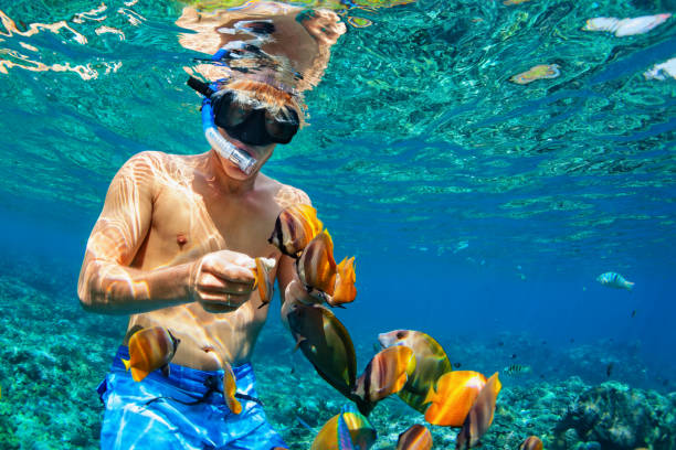 Young man snorkeling with coral reef fishes Happy family vacation - man in snorkeling mask dive underwater with tropical fishes in coral reef sea pool. Travel lifestyle, water sport outdoor adventure, swimming lessons on summer beach holiday underwater diving stock pictures, royalty-free photos & images