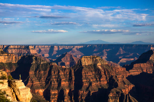 A Young Man Standing at the Edge of Grand Canyon stock photo