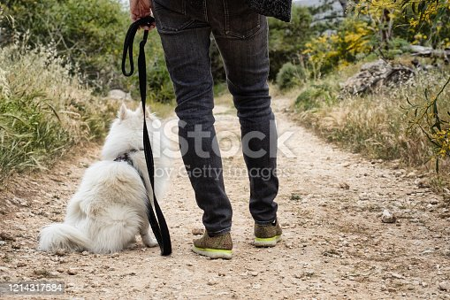 close up. Young man standing in the middle of green woods looking in with his white dog sitting looking at him attentively.