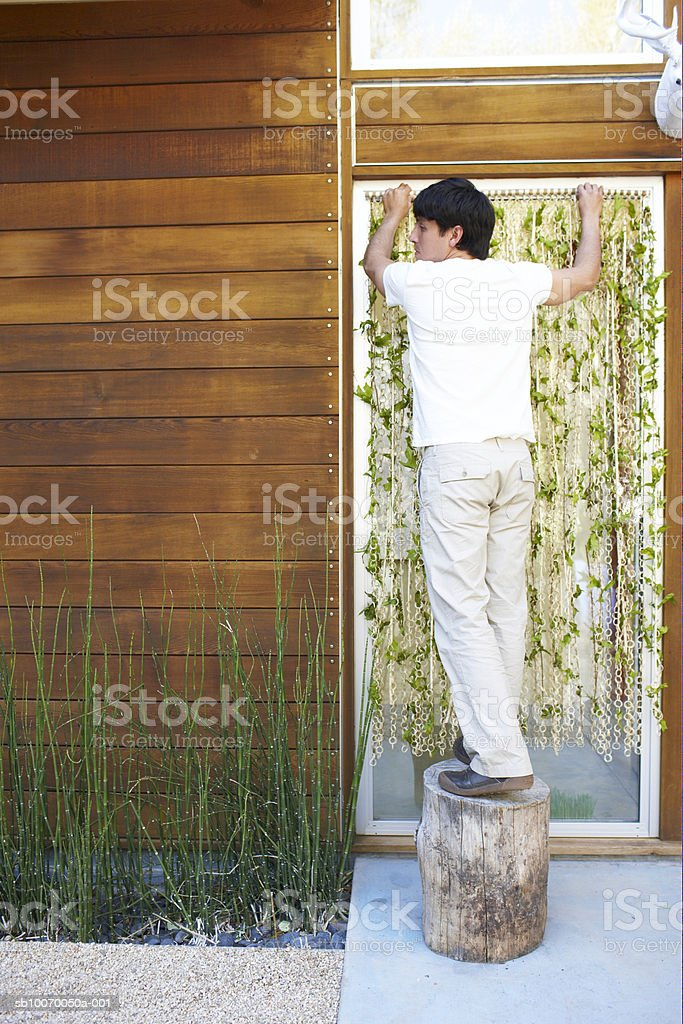 Young man standing on log fitting curtain, rear view royalty-free stock photo
