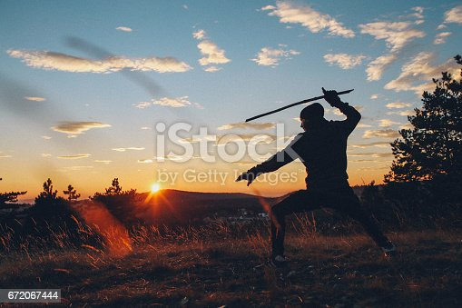 istock Young man training martial arts in the nature 672067444