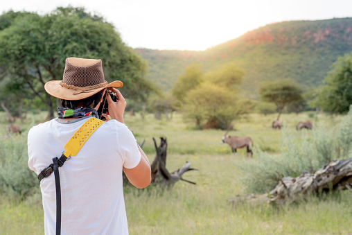 Young man traveler and photographer taking photo of Oryx, a type of wildlife animal in African safari