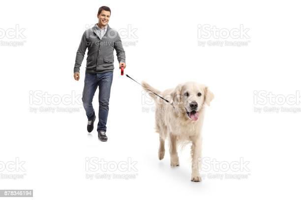Young man walking a dog picture id878346194?b=1&k=6&m=878346194&s=612x612&h=l 55ricgwdlxxlavtv2ivy dcofy3zbtl5jt44aofcm=