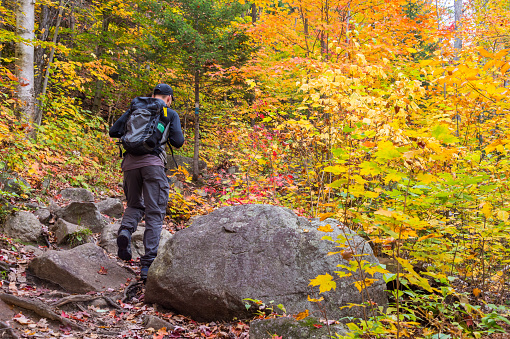 Young man walking on a hiking trail in a canadian forest during autumn colours (Val David, Laurentides, Canada)
