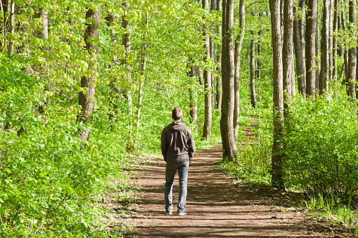 Young man walking on natural trail in park. Shadows over pathway. Green leaves. Peaceful atmosphere. Rest from loud city. Spending time alone in beautiful, sunny spring day. Fresh air. Back view.