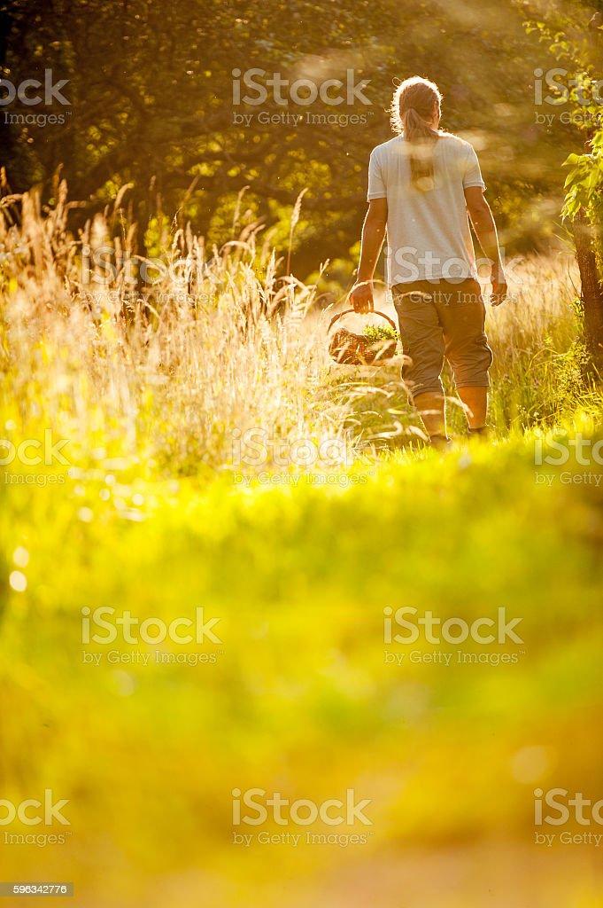Young Man Walking With a Basket Lizenzfreies stock-foto