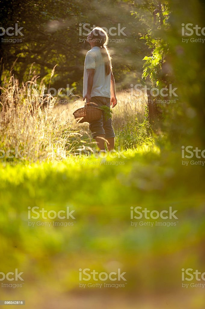 Young Man Walking With a Basket royalty-free stock photo