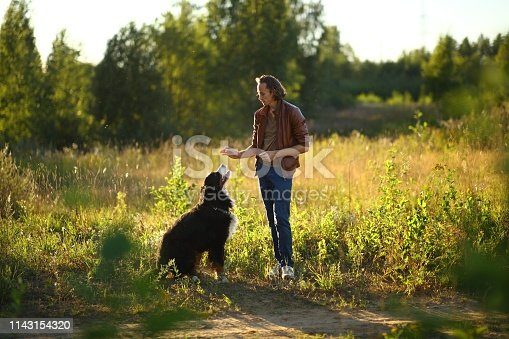 Side view at a young stylish caucasian man training Bernese Mountain Dog on the summer field