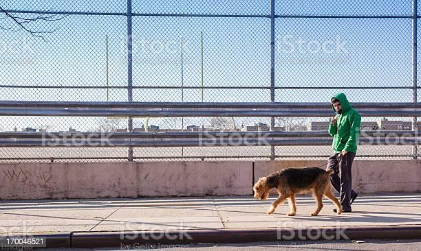 Young man walks dog picture id170046521?b=1&k=6&m=170046521&s=612x612&h=eef5o7o 4p48qshufi6dewxth f7kjnwwj2k ytjese=