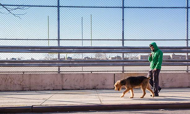 Young man walks dog picture id170046521?b=1&k=6&m=170046521&s=612x612&w=0&h=6wrevsb7nlzlc7ue1blfn  qcphdkh2byogzezeh0tw=