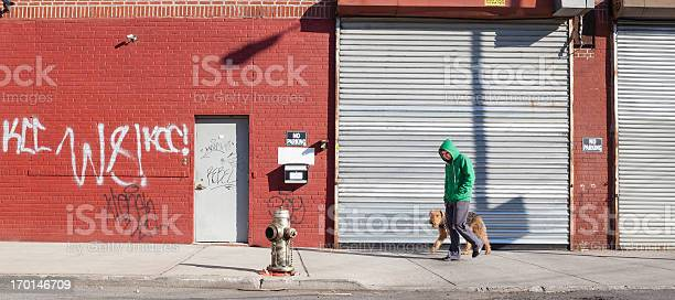 Young man walks dog picture id170146709?b=1&k=6&m=170146709&s=612x612&h=xqoqb pfgwcj3jj ghxwyl2aolckoijbpprafbrkfwg=