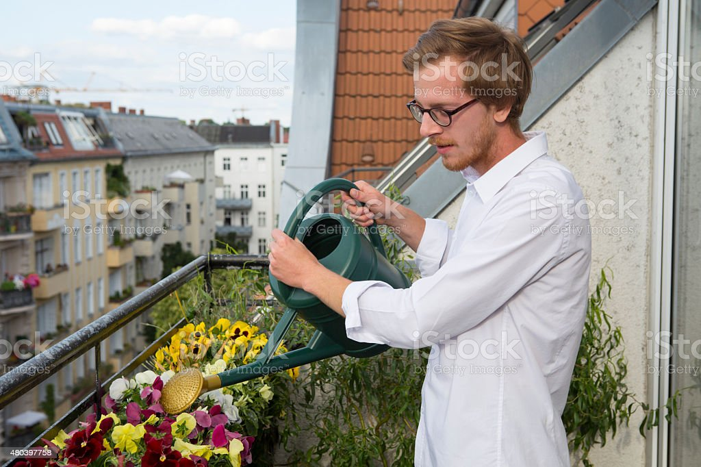 young man watering plants on balcony stock photo