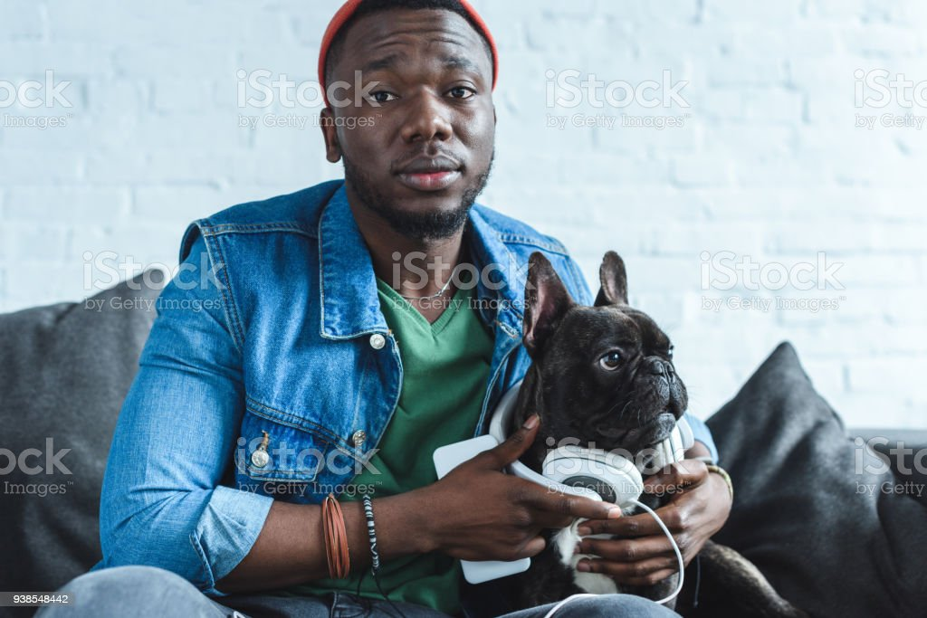Young man wearing headphones on Frenchie dog stock photo