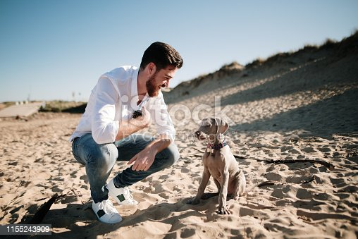 A young man spending time with a puppy dog at a beach