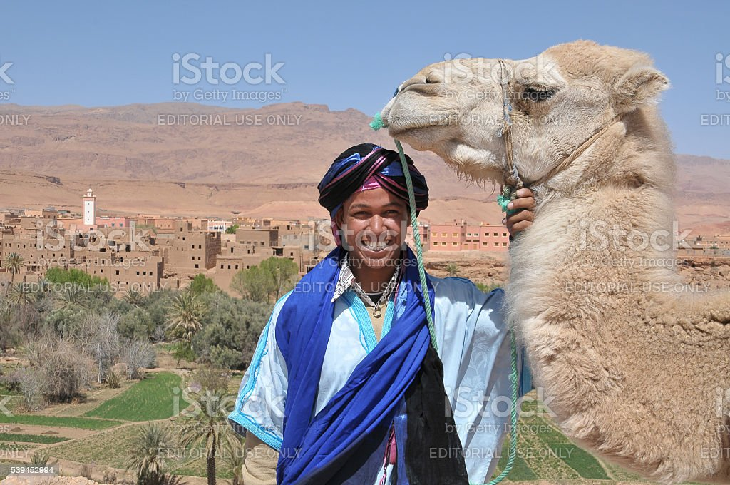 Hombre joven con camellos - foto de stock