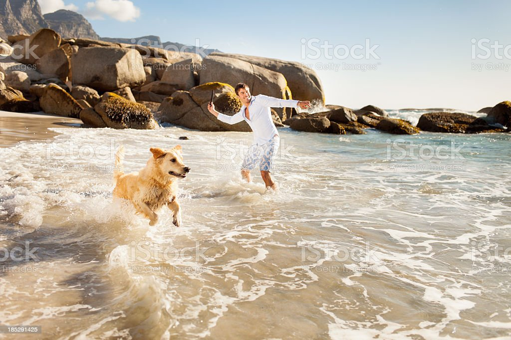 Young man with dog on beach stock photo