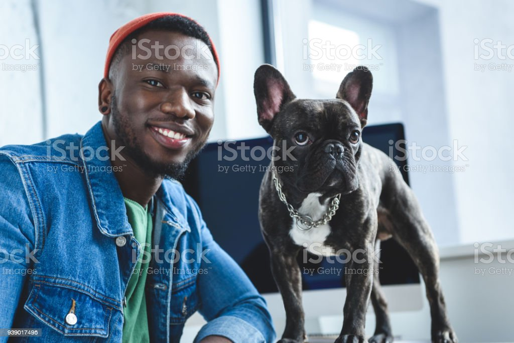 Young man with French bulldog by computer screen stock photo
