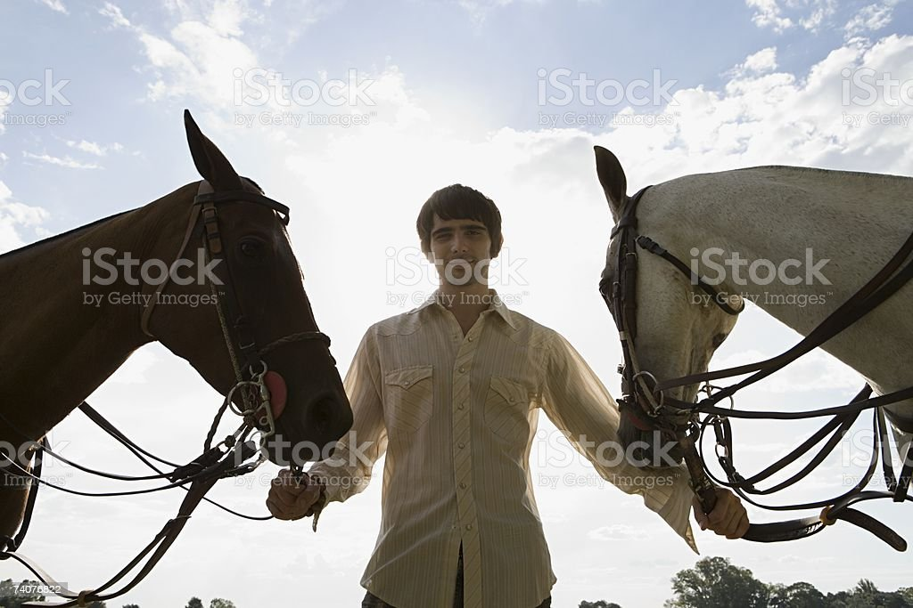 Young man with horses stock photo