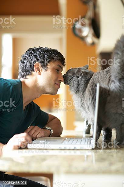 Young man with laptop and cat nose to nose side view picture id200543458 001?b=1&k=6&m=200543458 001&s=612x612&h=ef0a3 g0oqnzaipesnsm sczcj9y0gt6mf1vy6c3zfg=