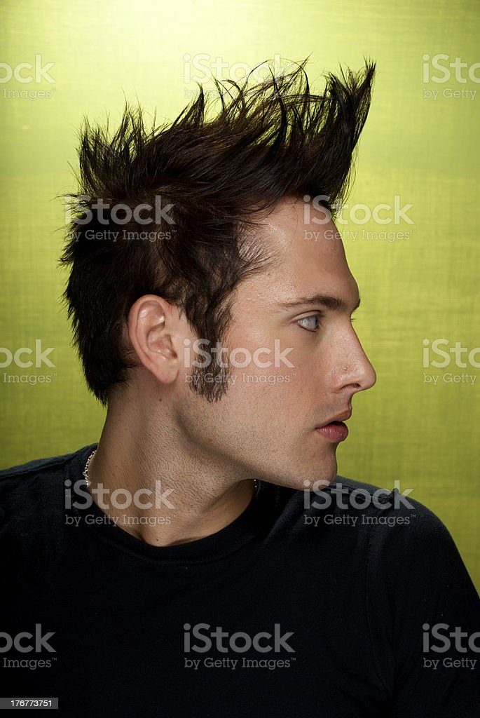 Young Man with Mohawk stock photo