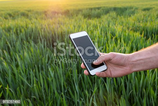 istock Young man with smart phone in field 973257450
