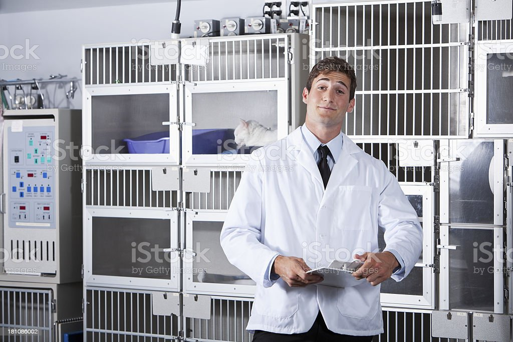 Young man working in animal clinic royalty-free stock photo