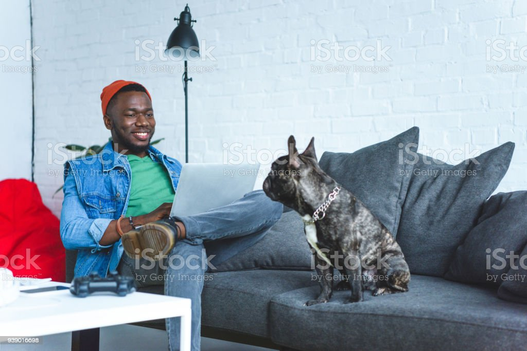 Young man working on laptop while sitting on sofa with bulldog stock photo