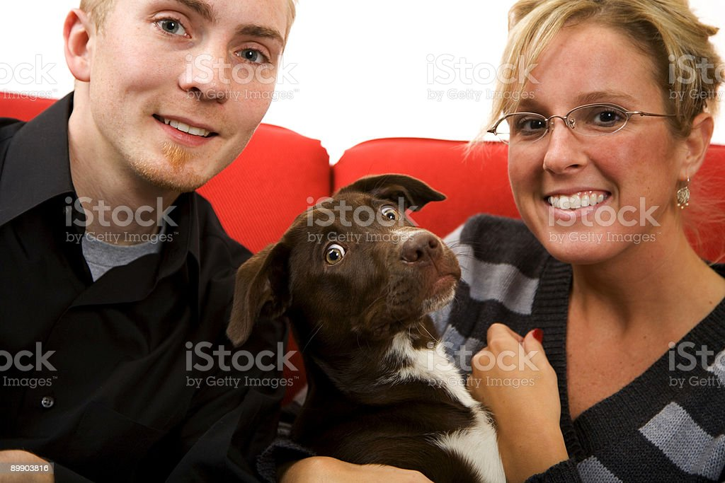 young married couple and puppy scene royalty-free stock photo