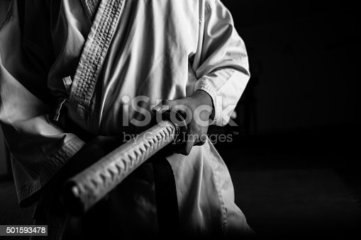 istock Young martial arts fighter with katana 501593478