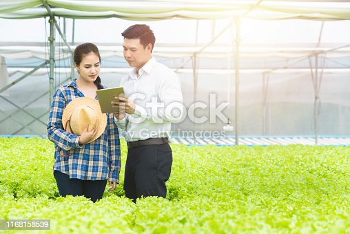 istock Young men Asian scientist check the quality control of the Agriculture food and show result with asian woman farmer,young business entrepreneur product new generation farmer concept 1168158539