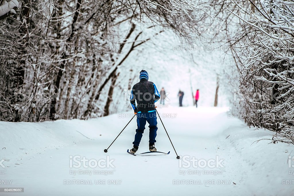 young men on skis in winter forest stock photo