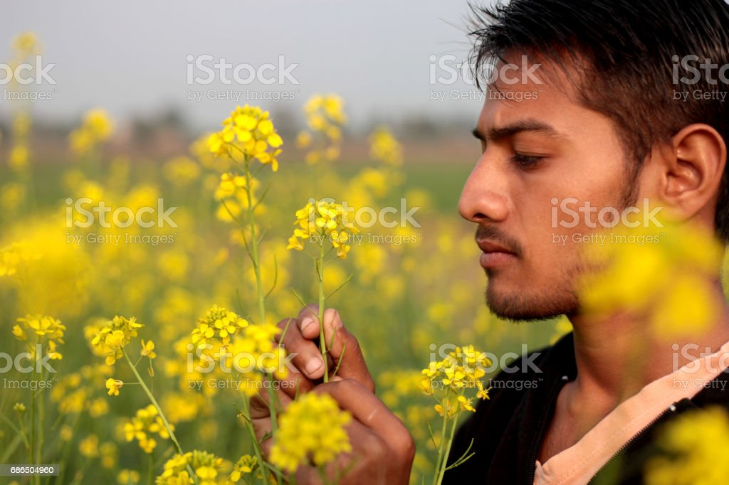 Young men standing in the field of mustard crop stock photo