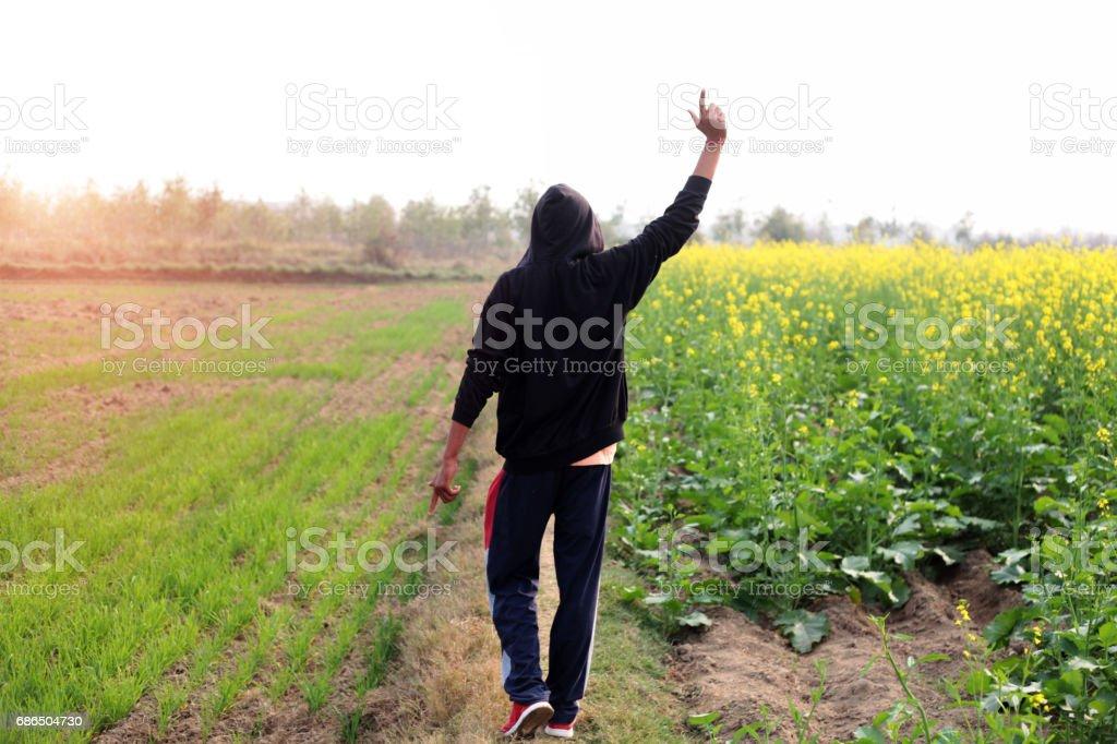 Young men walking near mustard crop field zbiór zdjęć royalty-free