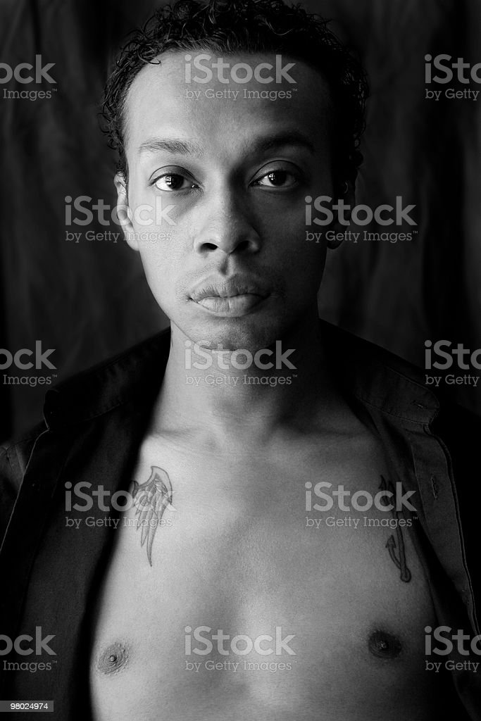 Young Mixed-Race Man royalty-free stock photo