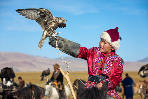 Young Mongolian boy in traditional Mongolian dress holding his falcon on horseback. Young children start training with falcons prior to working with golden eagles. Ulgii, Mongolia.