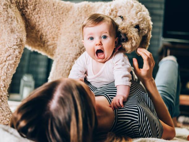 giovane madre e bambina giocano il tempo - bambino cane foto e immagini stock