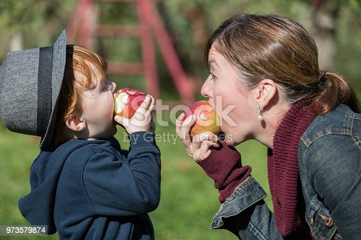 istock Young Mother and her Son Picking Apples in Orchard 973579874