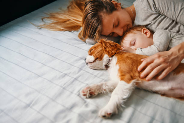 Young mother enjoys nap time with her baby and puppy picture id947237160?b=1&k=6&m=947237160&s=612x612&w=0&h=05ax6sfeutzrwfel97yl1k4w 2r oylvitmysmzvvhe=