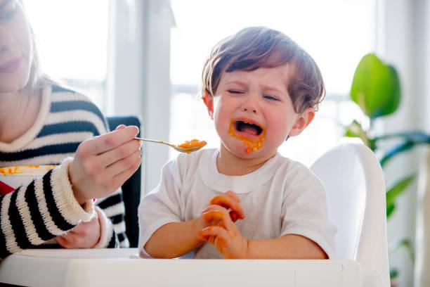junge mutter füttert einen kleinkind mit einem löffel und hund - kinderstuhl und tisch stock-fotos und bilder