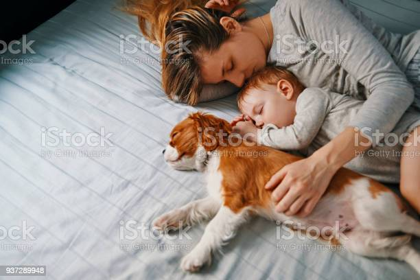 Young mother taking a nap with her babies picture id937289948?b=1&k=6&m=937289948&s=612x612&h=g7fk1dpk9kzi8qtnhmlwdalnozqynzkhnleaszeir68=