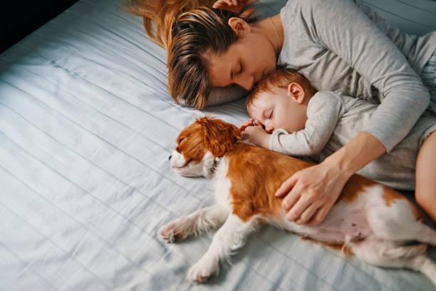 jeune mère sieste avec ses bébés - faire un somme photos et images de collection