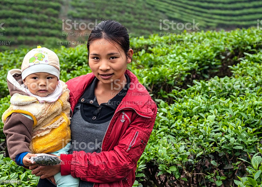 Young mother with child in tea plantation. stock photo