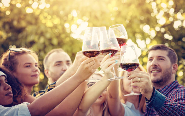 Young multi-ethnic friends having fun in a vineyard tour - Outdoar Hand Toasting of red wine before the sunset in autumn during the harvest time stock photo
